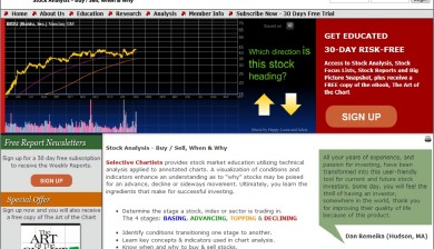 Selective Chartists Home Page Flash Presentation